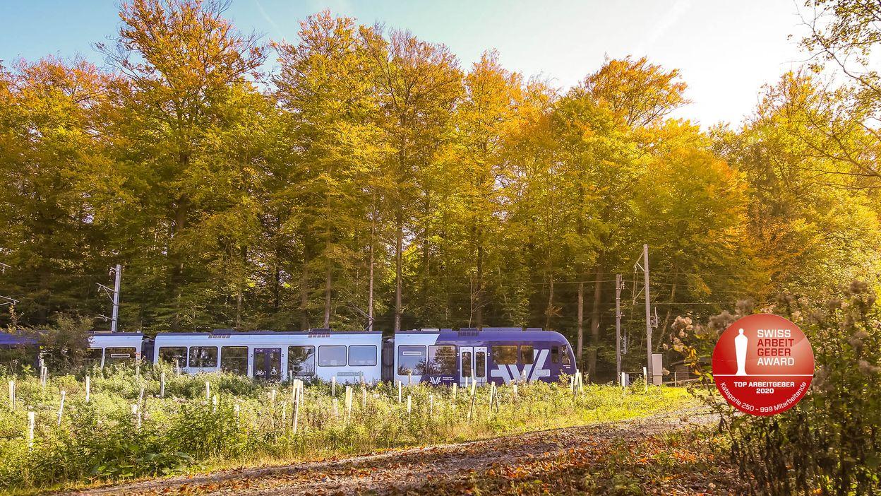 Aargau Verkehr AG (AVA)