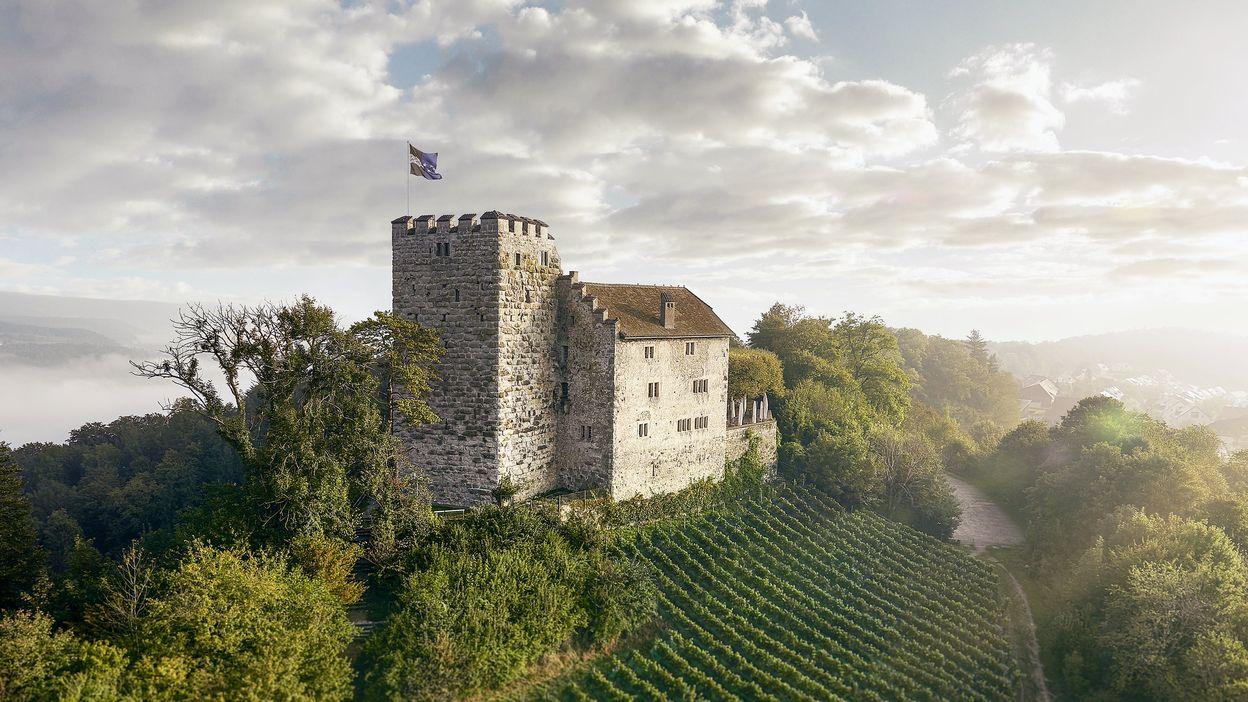 Ausflugsziel Schloss Habsburg